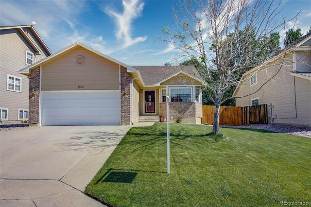 1510 Bear Cloud Drive, Colorado Springs, CO 80919 (#6627236) :: The Brokerage Group