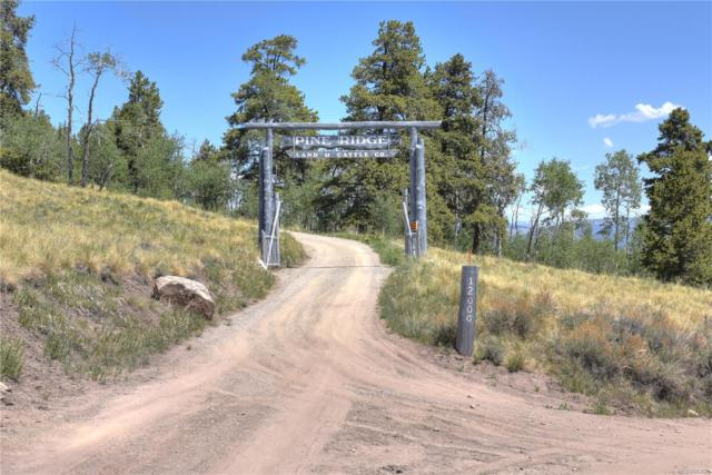 12000 Cty Rd 743 Cty Rd 743, Gunnison, CO 81230 (MLS #6630150) :: 8z Real Estate