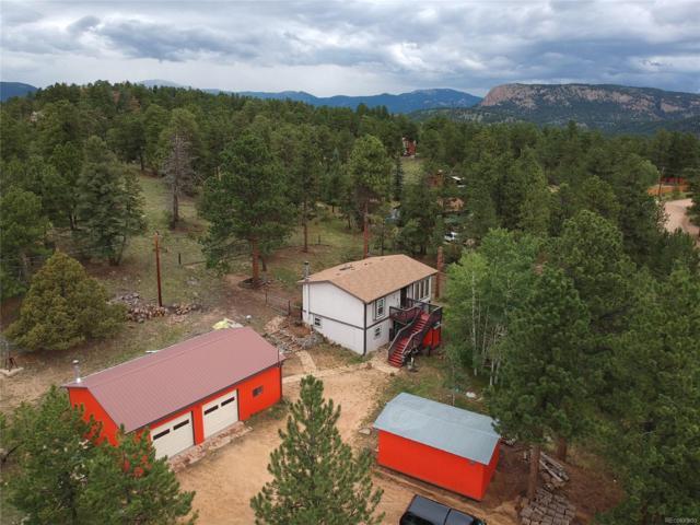 354 Doe Circle, Bailey, CO 80421 (MLS #6635002) :: 8z Real Estate