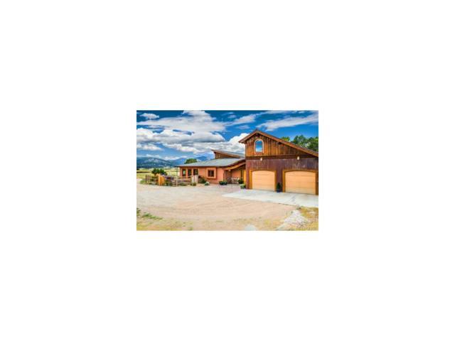 11890 Saddle Ridge Lane, Salida, CO 81201 (#6636798) :: The Peak Properties Group