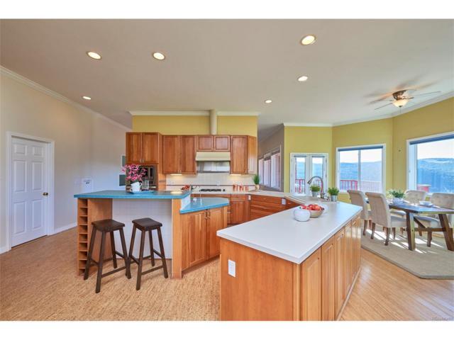91 Navajo Trail, Nederland, CO 80466 (MLS #6637809) :: 8z Real Estate