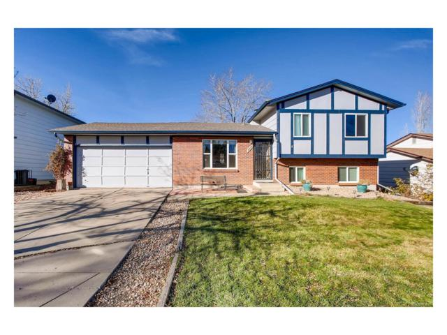 4809 S Xenophon Street, Morrison, CO 80465 (#6641975) :: The Sold By Simmons Team