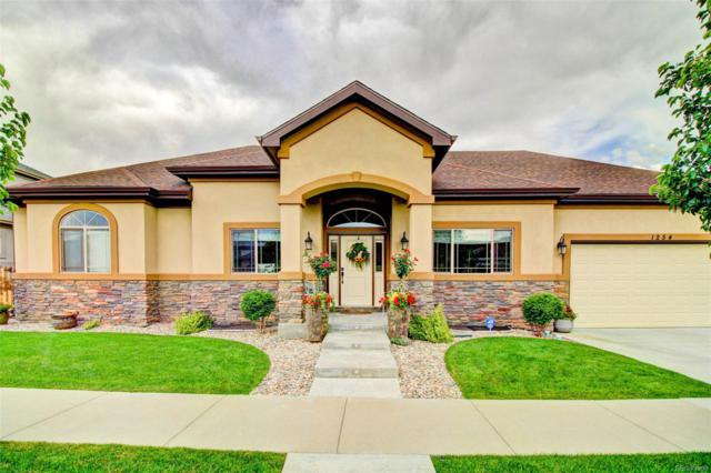 1254 S Balsam Court, Lakewood, CO 80232 (#6645407) :: The Griffith Home Team