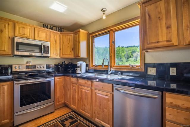 28725 To-O-Witz Trail, Steamboat Springs, CO 80487 (#6648156) :: The City and Mountains Group