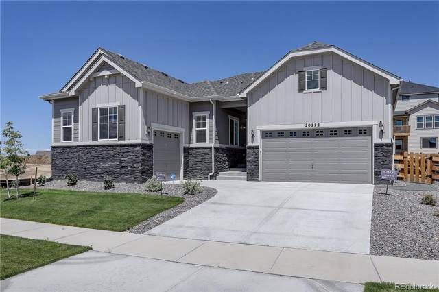 20272 Terrace View Drive, Parker, CO 80134 (#6648315) :: The DeGrood Team