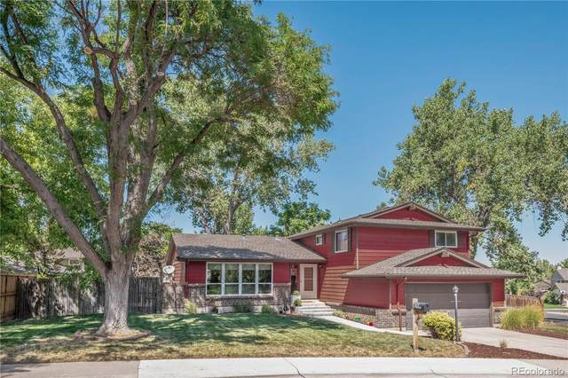 5111 W 101st Circle, Westminster, CO 80031 (MLS #6649341) :: 8z Real Estate