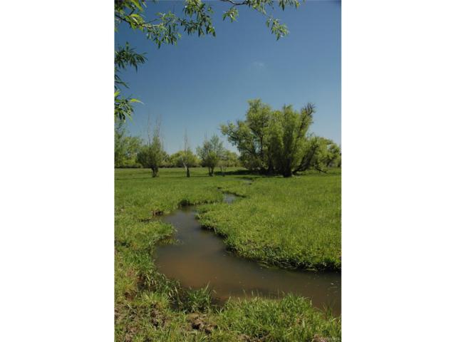 1 Polo Run Dr, Elizabeth, CO 80107 (MLS #6651111) :: 8z Real Estate