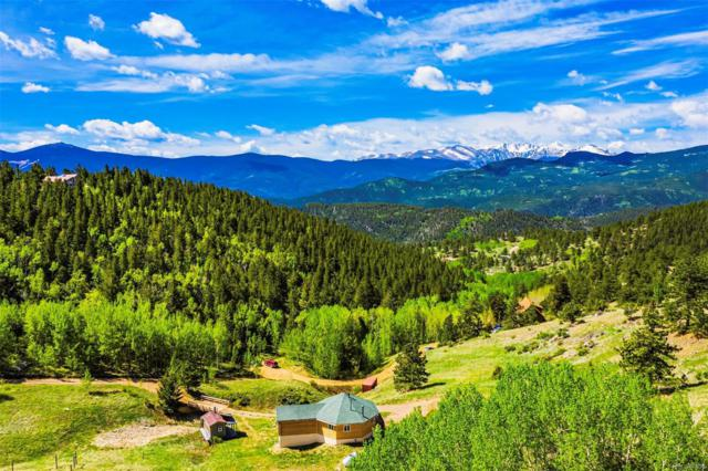 481 Red Tail Ridge Road, Idaho Springs, CO 80452 (#6651301) :: 5281 Exclusive Homes Realty