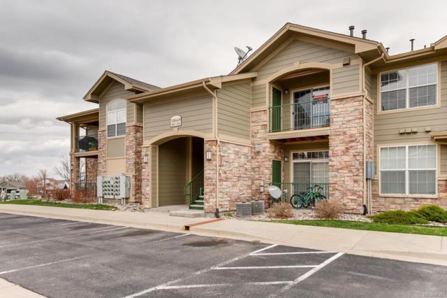 18669 Stroh Road #10205, Parker, CO 80134 (#6652246) :: The Dixon Group