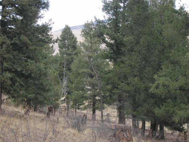 00 Trout Creek, Fairplay, CO 80440 (MLS #6653828) :: 8z Real Estate
