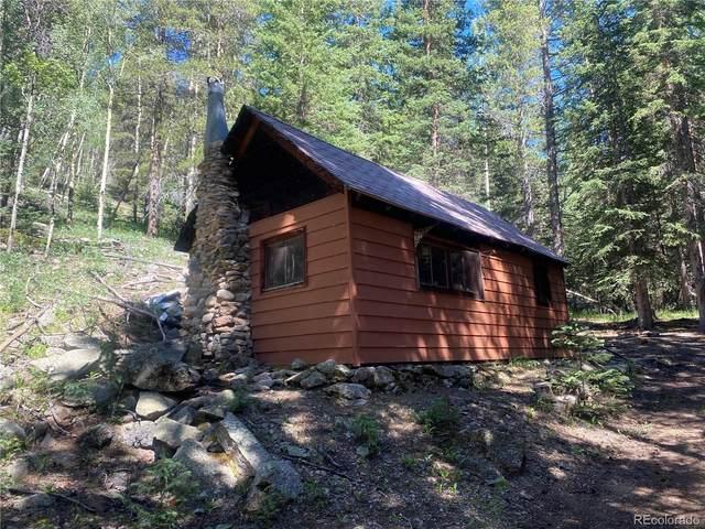 555 Peaceful Valley Lane, Idaho Springs, CO 80452 (#6654329) :: The DeGrood Team