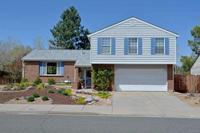 9835 W 81st Avenue, Arvada, CO 80005 (#6655992) :: House Hunters Colorado