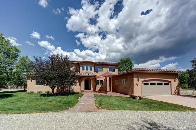 6955 County Road 111B, Salida, CO 81201 (#6656060) :: The Scott Futa Home Team