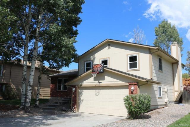 5602 Mosquito Pass Drive, Colorado Springs, CO 80917 (#6660643) :: Ben Kinney Real Estate Team