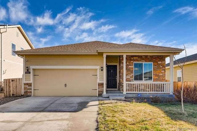 9558 Dahlia Lane, Thornton, CO 80229 (#6662765) :: The DeGrood Team