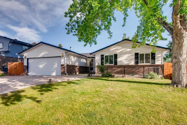 3720 W 95th Avenue, Westminster, CO 80031 (#6666317) :: The Galo Garrido Group