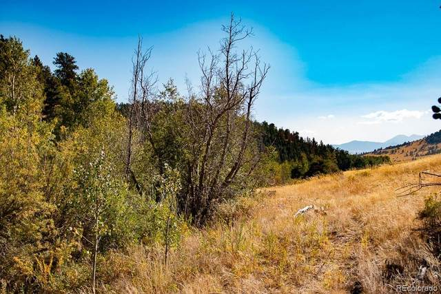 382A Williams Creek Road, Gardner, CO 81040 (MLS #6666714) :: Bliss Realty Group