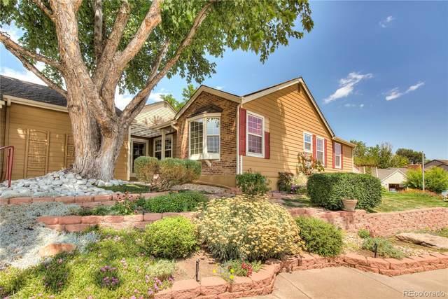 2155 E Nichols Drive, Centennial, CO 80122 (#6668260) :: Bring Home Denver with Keller Williams Downtown Realty LLC