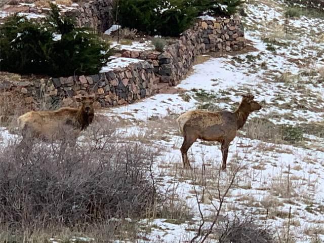 7358 Hawk Nest Trail, Littleton, CO 80125 (#6668504) :: The HomeSmiths Team - Keller Williams