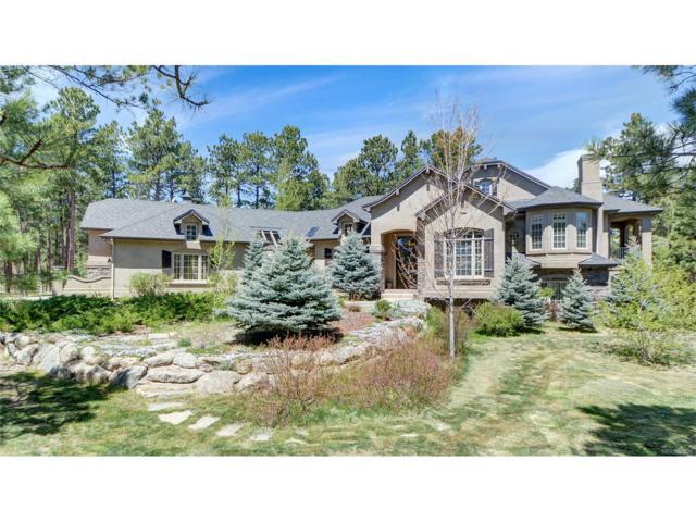 18550 Archers Drive, Monument, CO 80132 (MLS #6668861) :: 8z Real Estate