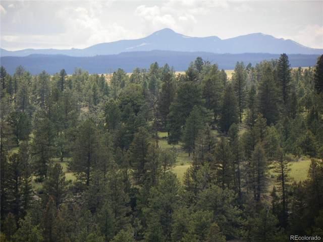 168.64 Acres, Saguache, CO 81149 (#6671875) :: The DeGrood Team