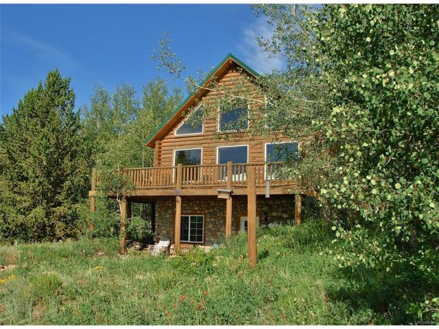 166 Lamb Mountain Road, Fairplay, CO 80440 (MLS #6673896) :: 8z Real Estate