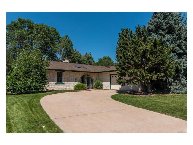 4445 S Xavier Street, Denver, CO 80236 (MLS #6675872) :: 8z Real Estate