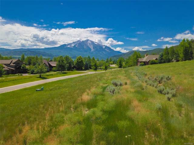 741 Perry Ridge Road, Carbondale, CO 81623 (#6676628) :: HomePopper