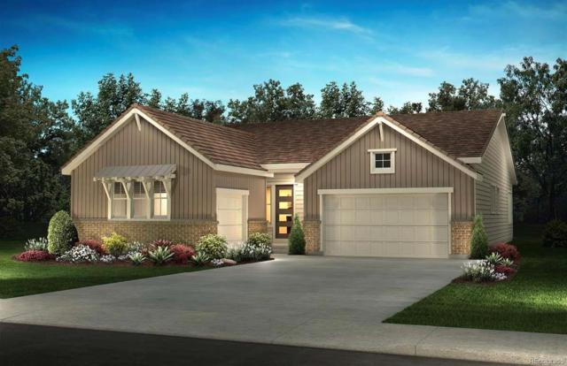 11220 Sweet Cicely Drive, Parker, CO 80134 (#6677624) :: The Peak Properties Group