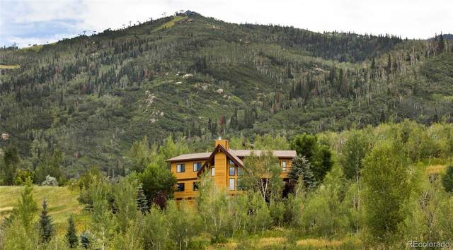 2230 Bear Drive, Steamboat Springs, CO 80487 (#6681277) :: HomeSmart Realty Group