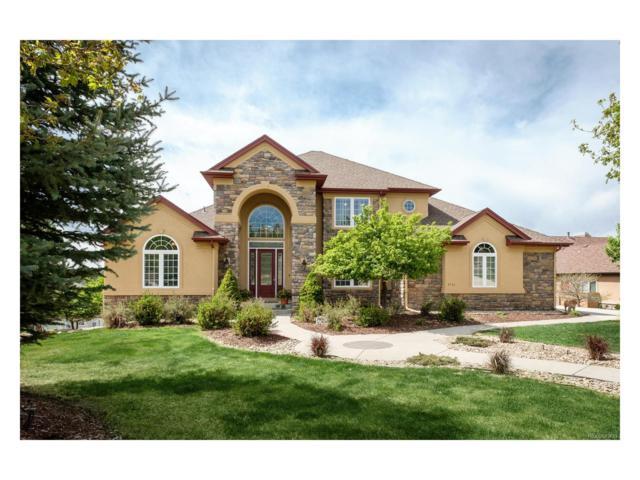 8394 Gopher Court, Parker, CO 80134 (MLS #6681624) :: 8z Real Estate