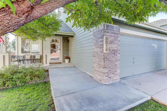 8814 Jackdaw Street, Littleton, CO 80126 (MLS #6683870) :: 8z Real Estate