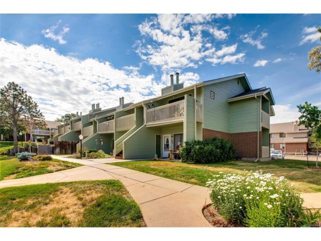 532 Oakwood Drive B103, Castle Rock, CO 80104 (MLS #6685532) :: 8z Real Estate