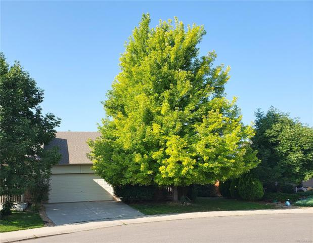 1664 Canary Place, Loveland, CO 80537 (MLS #6685818) :: Kittle Real Estate