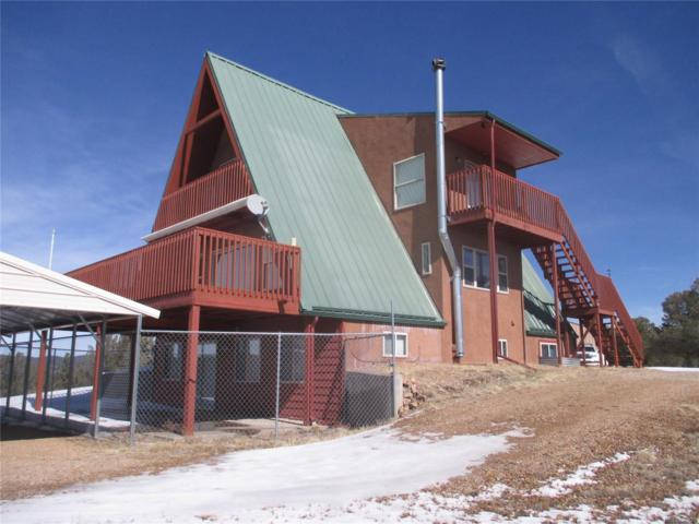 4826 Cody Park Road, Cotopaxi, CO 81223 (#6688345) :: Mile High Luxury Real Estate
