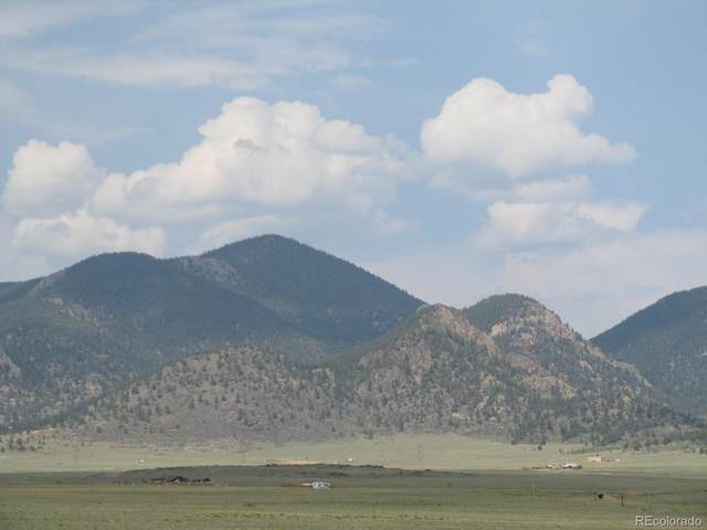 Delaware Rd, Hartsel, CO 80449 (#6689026) :: The Healey Group
