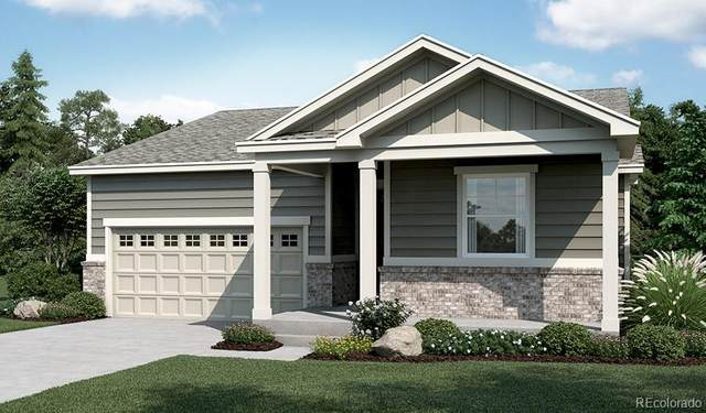 4128 Castle Vista Lane, Castle Rock, CO 80104 (#6692871) :: Wisdom Real Estate