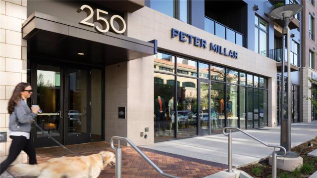 250 Columbine Street #513, Denver, CO 80206 (MLS #6694286) :: 8z Real Estate