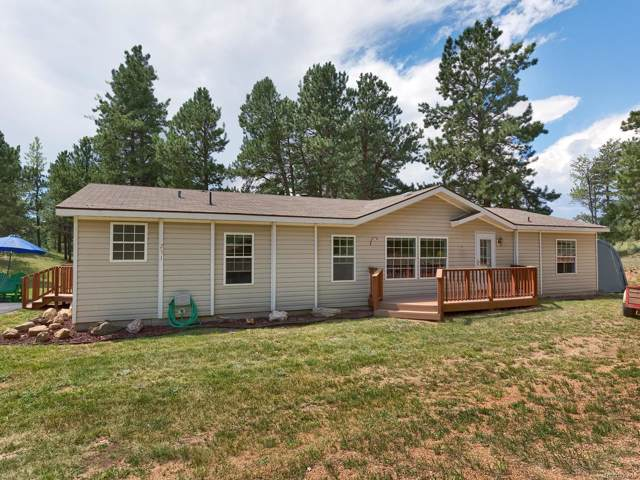 251 Rhyolite Lane, Florissant, CO 80816 (#6695060) :: The Peak Properties Group