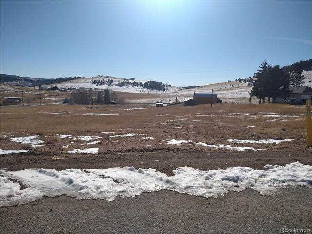 0 W Eaton Avenue, Cripple Creek, CO 80813 (#6695994) :: Venterra Real Estate LLC