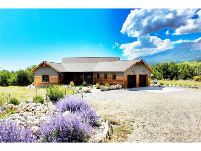 17621 Reserve Drive, Buena Vista, CO 81211 (#6697230) :: Structure CO Group