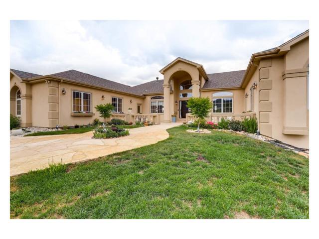 4596 High Spring Road, Castle Rock, CO 80104 (MLS #6701138) :: 8z Real Estate