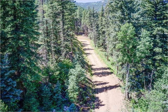 2965 Witter Gulch Road, Evergreen, CO 80439 (#6706503) :: The Griffith Home Team