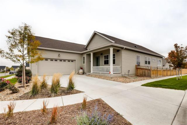 4806 Mt Shavano Street, Brighton, CO 80601 (#6708020) :: The Healey Group
