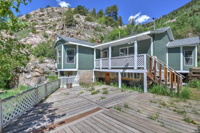 830 Willis Street, Silver Plume, CO 80476 (#6708186) :: Harling Real Estate
