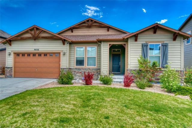 9536 Nile Way, Arvada, CO 80007 (#6711490) :: The DeGrood Team
