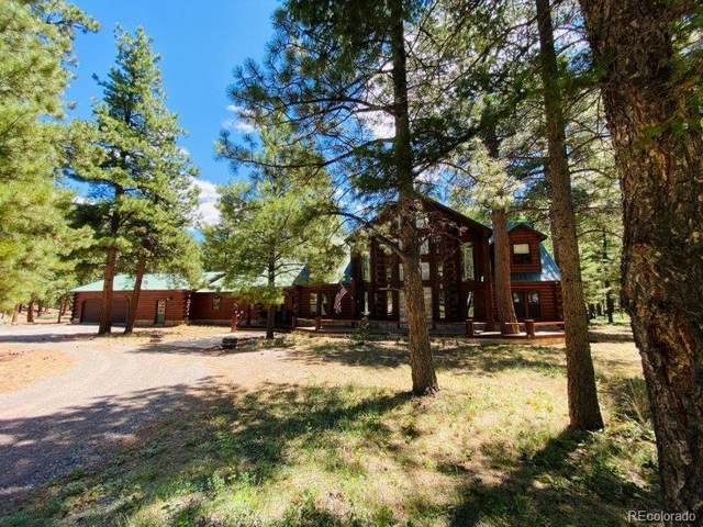 612 Elk Meadow Run, Antonito, CO 81120 (#6716979) :: The DeGrood Team