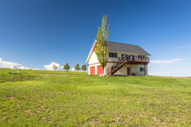 7500 Scenic Drive, Hayden, CO 81639 (#6720930) :: The Heyl Group at Keller Williams