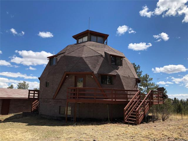 1985 Timber Mesa, Florissant, CO 80816 (#6722636) :: The Pete Cook Home Group