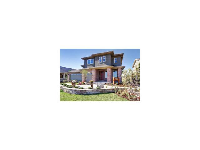 1625 Mcmurdo Trail, Castle Rock, CO 80108 (MLS #6724679) :: 8z Real Estate